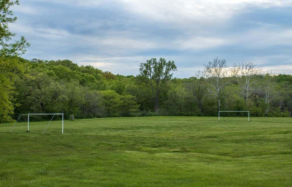 Sân bóng đá cỏ gần bìa rừng xanh ngát, bìa rừng và mặt cỏ có màu xanh tương đồng rất đẹp